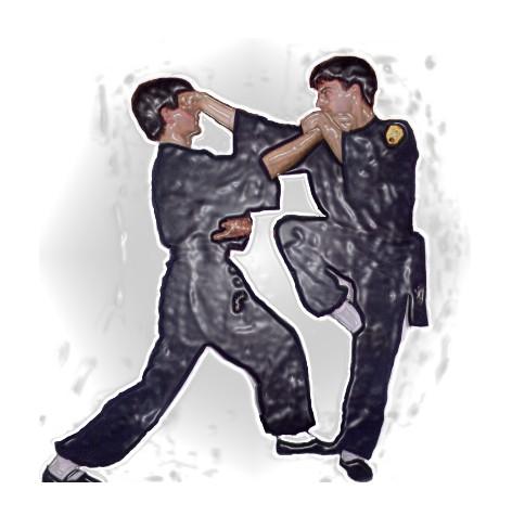 Estilos de Kung-fu