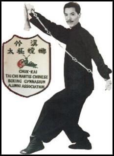 Estilo TangLang